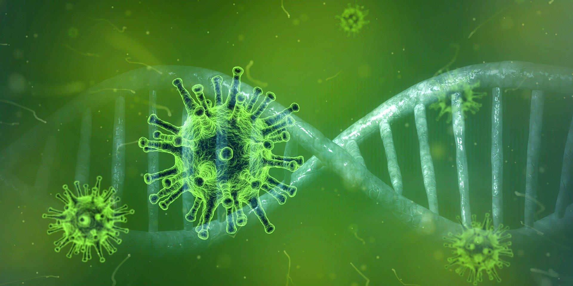 Ustawa obowiązująca od dnia 8 marca 2020 r. została uchwalona w związku z rozprzestrzenianiem się zakażeń wirusem SARS CoV-2 mogącym wywołać chorobę określaną, jako COVID-19.